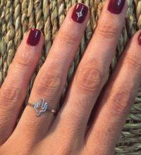 anillo cactus plata